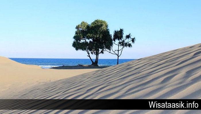 Destinasi Wisata Gurun Pasir Khas Pantai Oetune