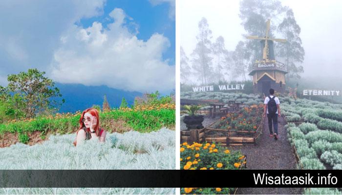 Taman Edelweiss Destinasi Wisata Hits dan Instagramable di Bali