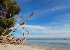 Rekomendasi Pantai Indah di Dekat Bogor